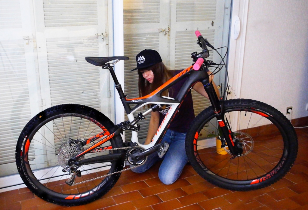 claudia clement all mountain Style AMS Frame guard